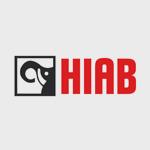 mra-client-09-industrial-hiab